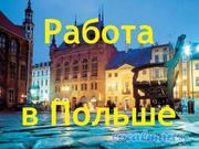 Работа в Польшу строителей, сварщиков, водителей.