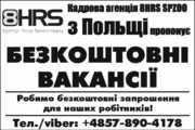 сортировка саженцев клубники