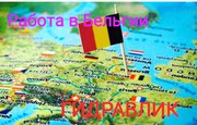 Сантехник,  Бельгия