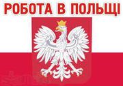 Работа в Польше Монолит,  Кладочные работы