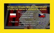 Високооплачувана робота в Польщі від агентства в Харкові
